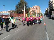 Actos de la Media Maratón Elche 2017